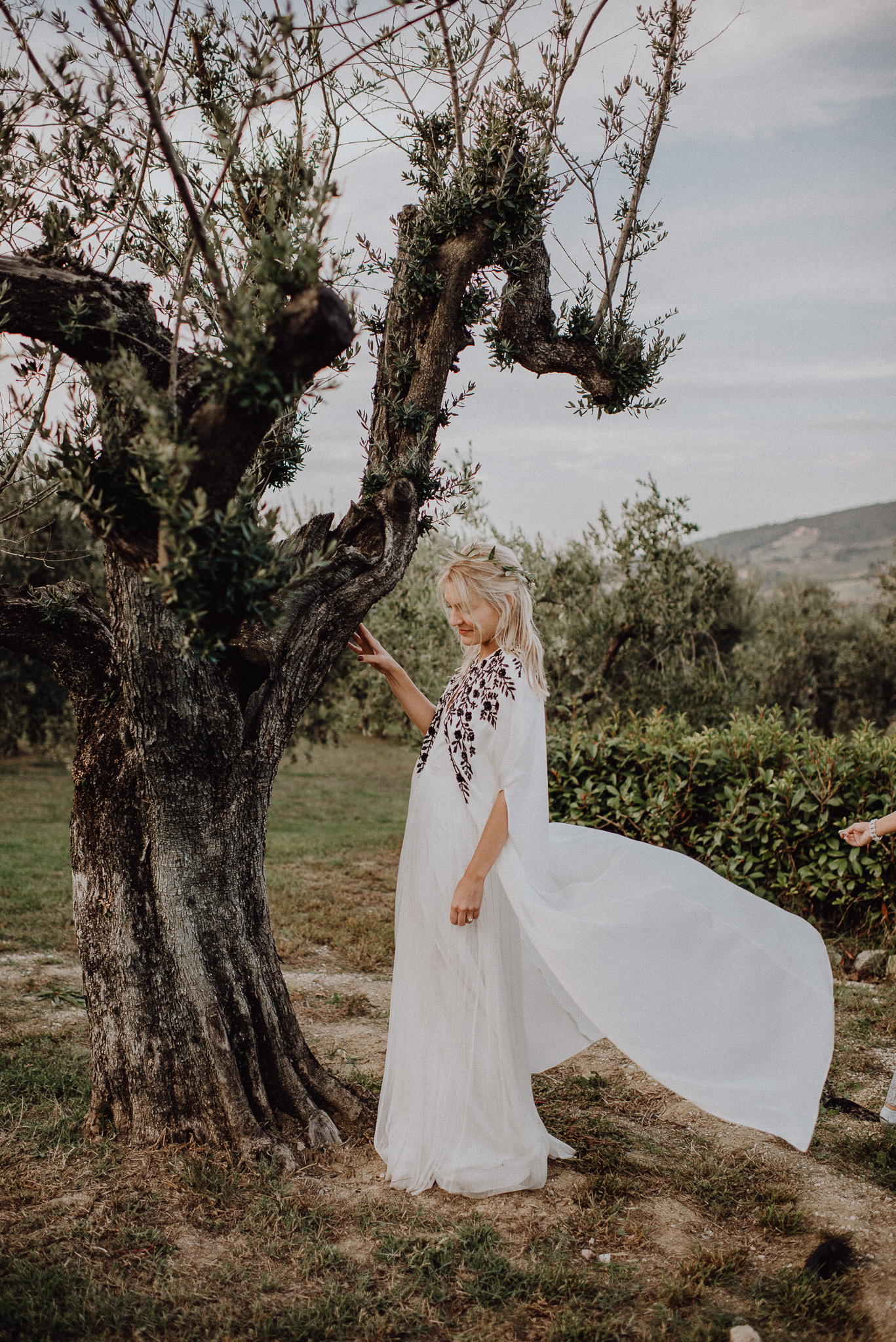 ceremony_olive_trees
